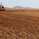رئیس جهادکشاورزی شهرستان چرام خبرداد:کشت پاییزه در ۱۰ هزار هکتار از اراضی چرام آغاز شد