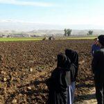 کشت محصولات زراعی در بیش از ۱۳۴هزار هکتار زمین کشاورزی کهگیلویه وبویراحمد