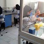 تنها آزمایشگاه دولتی شهرستان کهگیلویه تعطیل می شود