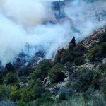 عدم اختصاص بودجه به مدیریت بحران برای مقابله با آتش سوزی جنگل ها و مراتع/دلایل عمده آتش سوزی ها