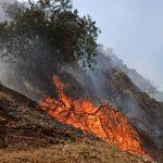 شعله ور شدن مجدد آتش در جنگل های گچساران